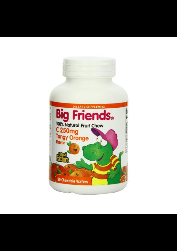ВИТАМИН С 250мг БИГ ФРЕНДС (портокал) дъвчащи таблетки 90 бр. НАТУРАЛ ФАКТОРС | VITAMIN C 250mg BIG FRIENDS chewable tabs 90s NATURAL FACTORS